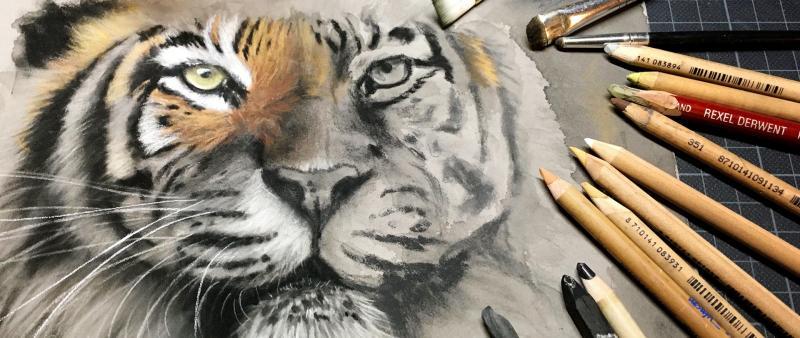 Faszination Tierporträt – Zeichenkohle mit Farbakzenten
